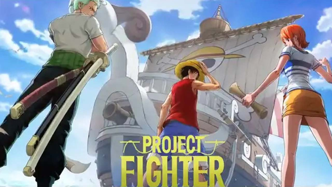One Piece Project Fighter